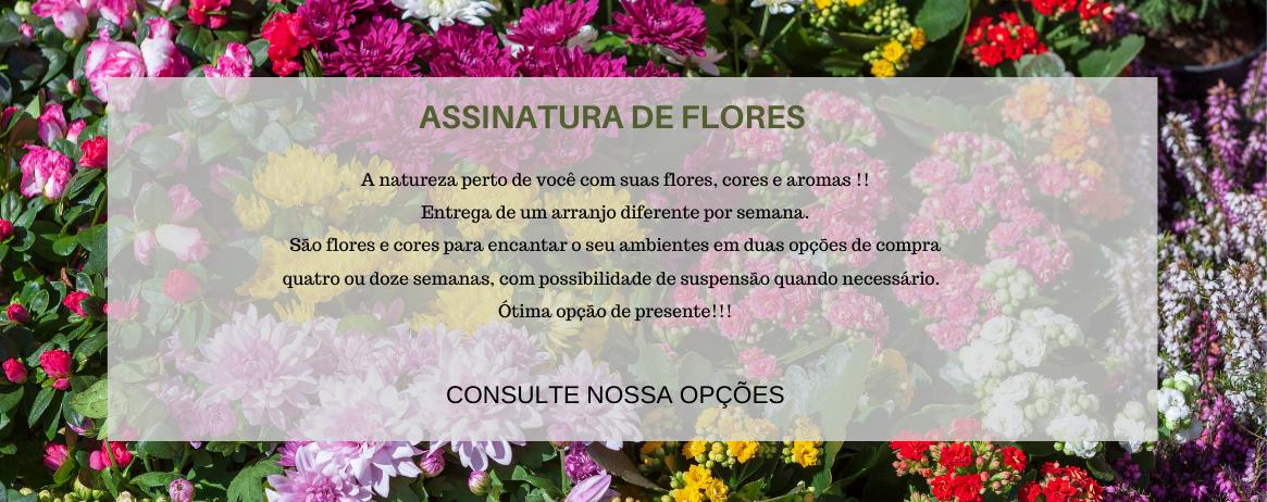 Assinatura de Flores